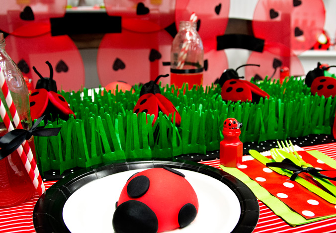 Diy Ladybug Party Birthday Express